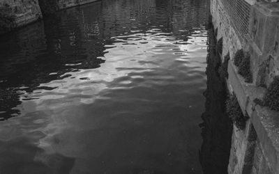 La Lézarde, portrait d'une rivière